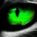 Go to Tristan Dryusdan's profile