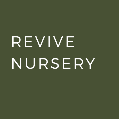 Go to Revive Nursery's profile