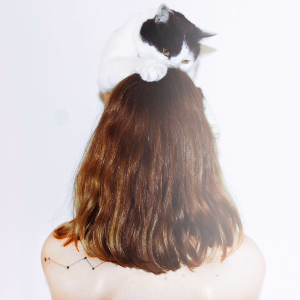 Go to Emilce Giardino's profile