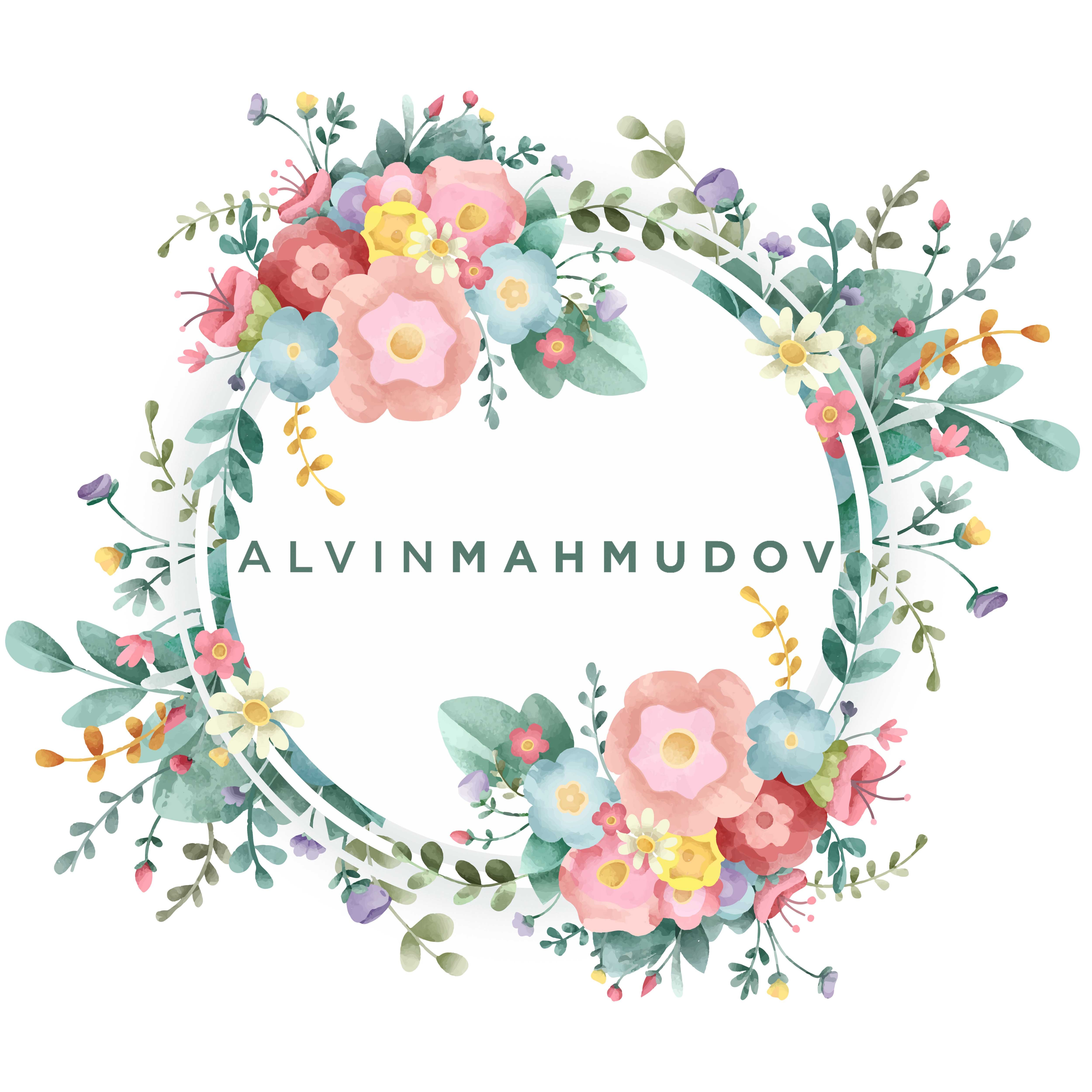 Avatar of user Alvin Mahmudov