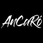 Avatar of user Ancaro Project