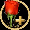Go to Ansa Cubet's profile