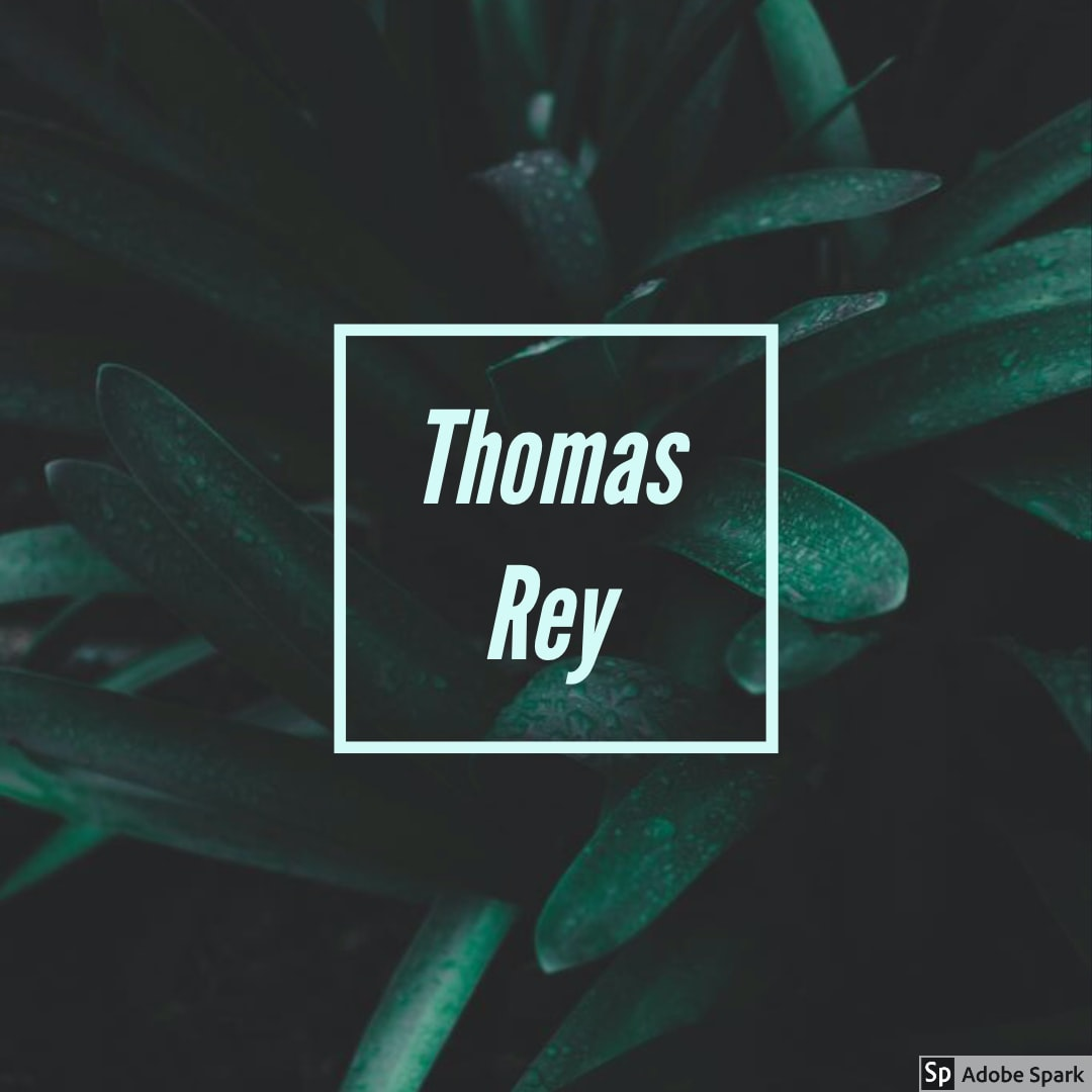 Avatar of user Thomas Rey
