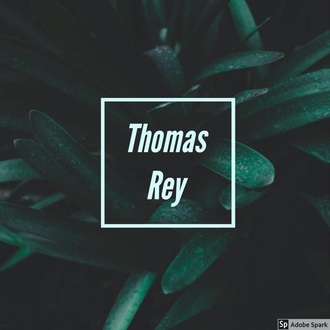 Go to Thomas Rey's profile