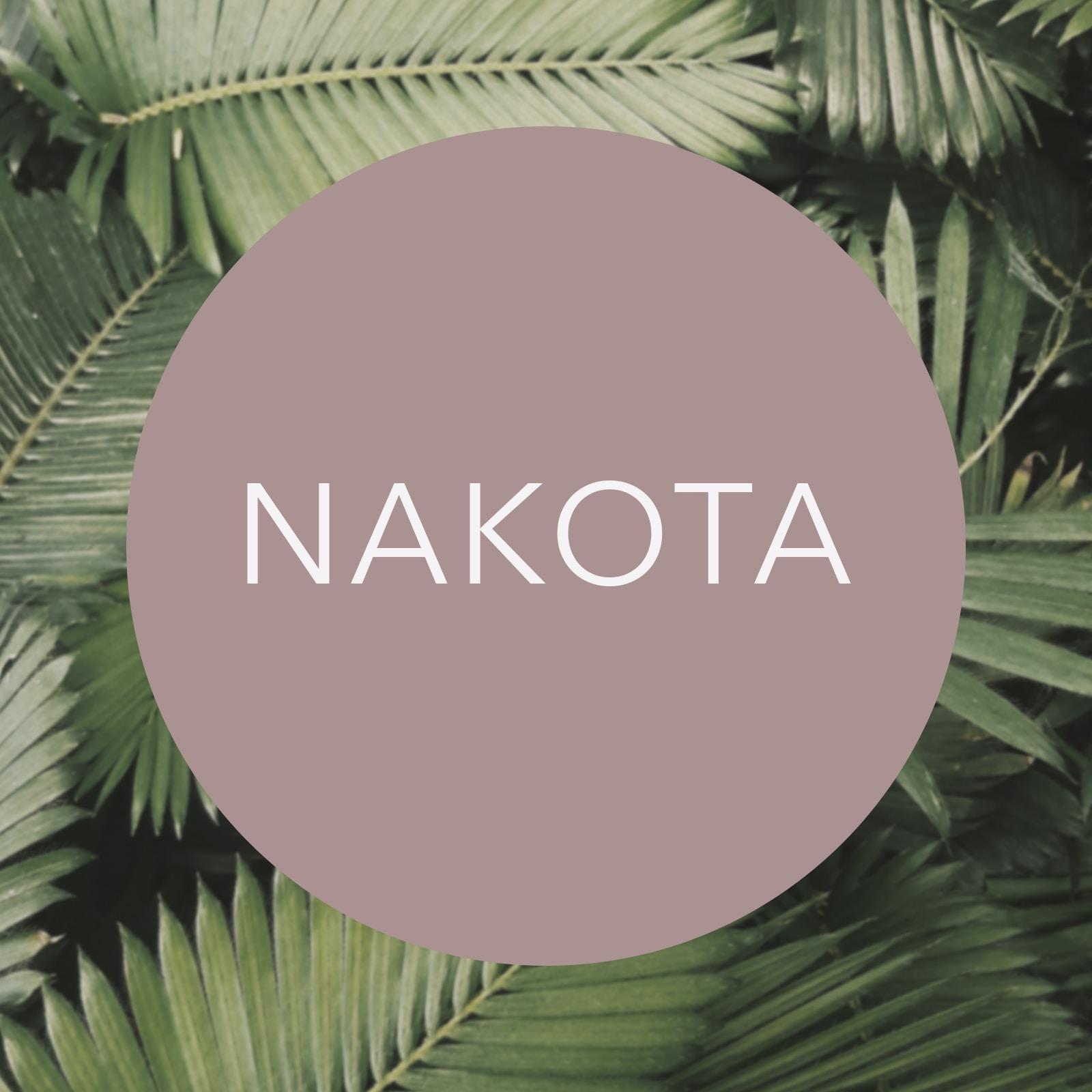 Go to Nakota Wagner's profile