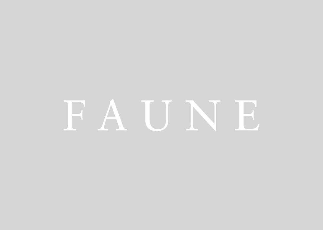 Go to Faune Magazine's profile