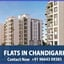 Avatar of user Flats in Chandigarh