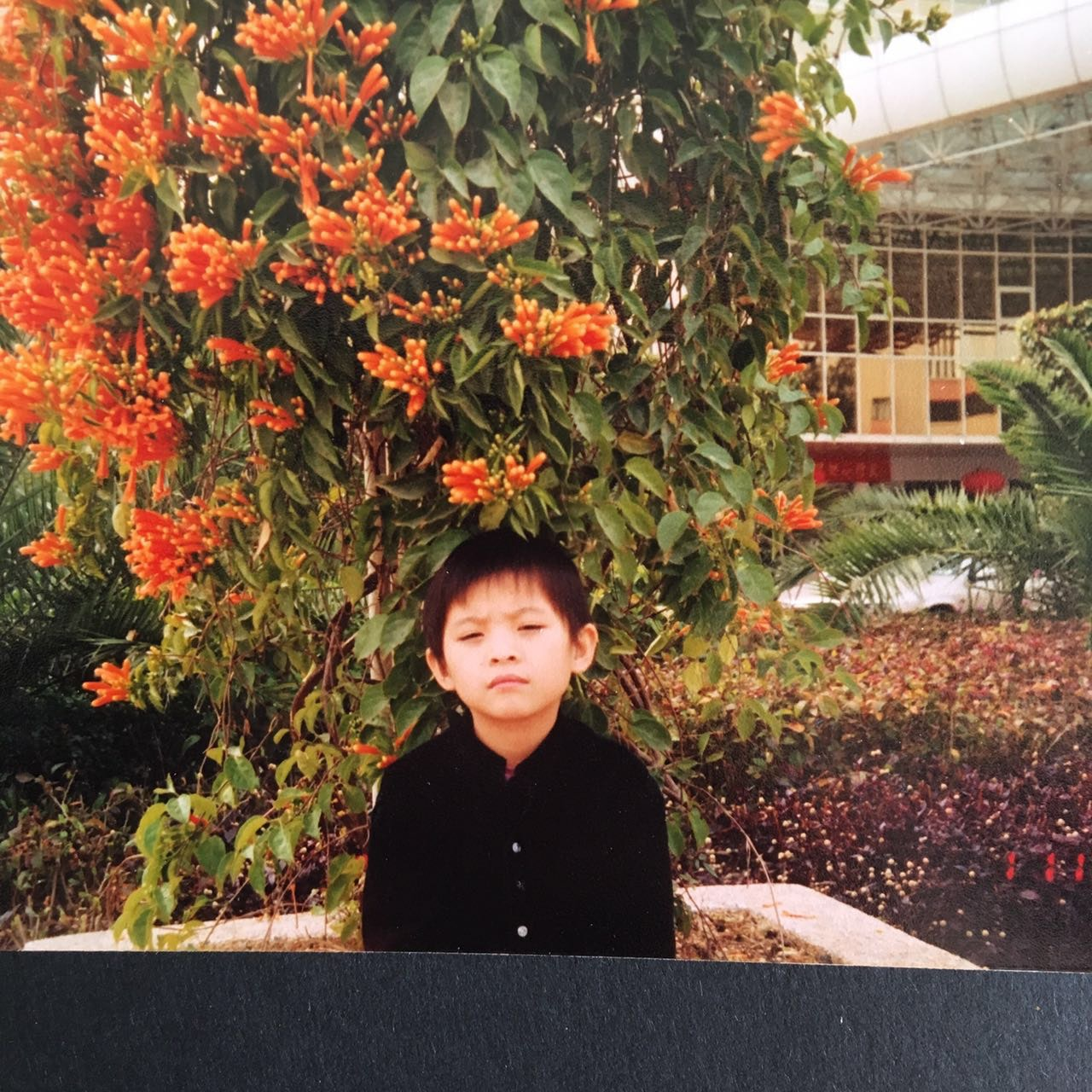 Avatar of user Yuzki Wang