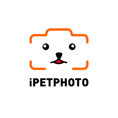 Go to ipet photo's profile