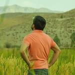 Avatar of user Mojtaba Hoseini