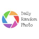 Avatar of user Daily Random Photo