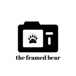 Avatar of user The Framed Bear