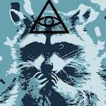 Avatar of user Flummox Raccoon