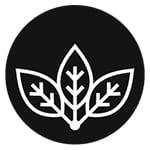 Avatar of user Birch Moon Wellness Co