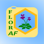 Avatar of user Floraf