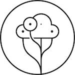 Avatar of user Olli Kilpi