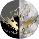 Avatar of user Volfangel
