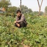Avatar of user Arjun Reporter