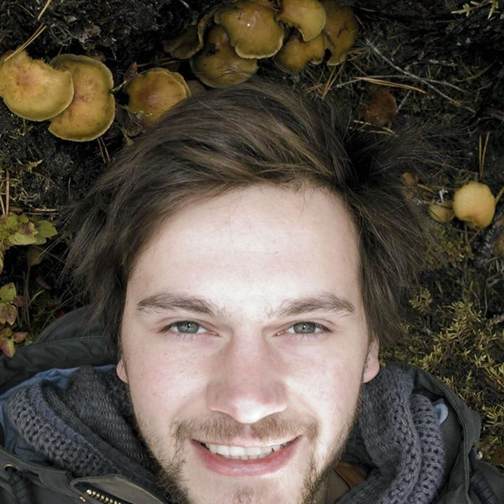 Go to Александр Кузнецов's profile