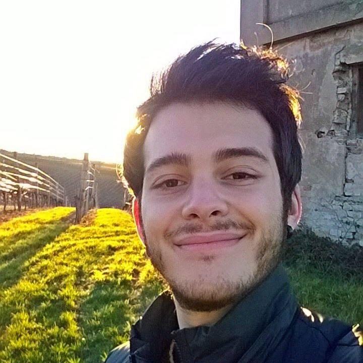 Go to Filippo Pugliatti's profile