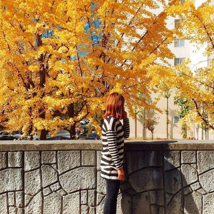 Go to Lee Hye Yeon's profile