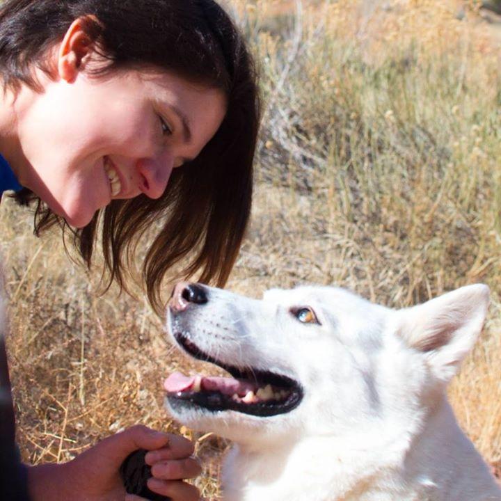 Go to Alison Nicolosi's profile