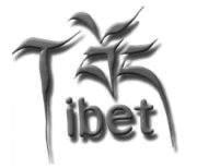 Go to Loric Tibet's profile