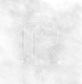 Go to Paul Risco's profile