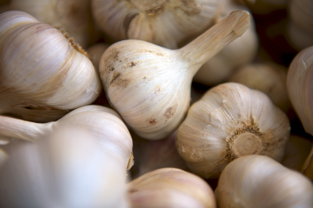 selective focus photography of onion