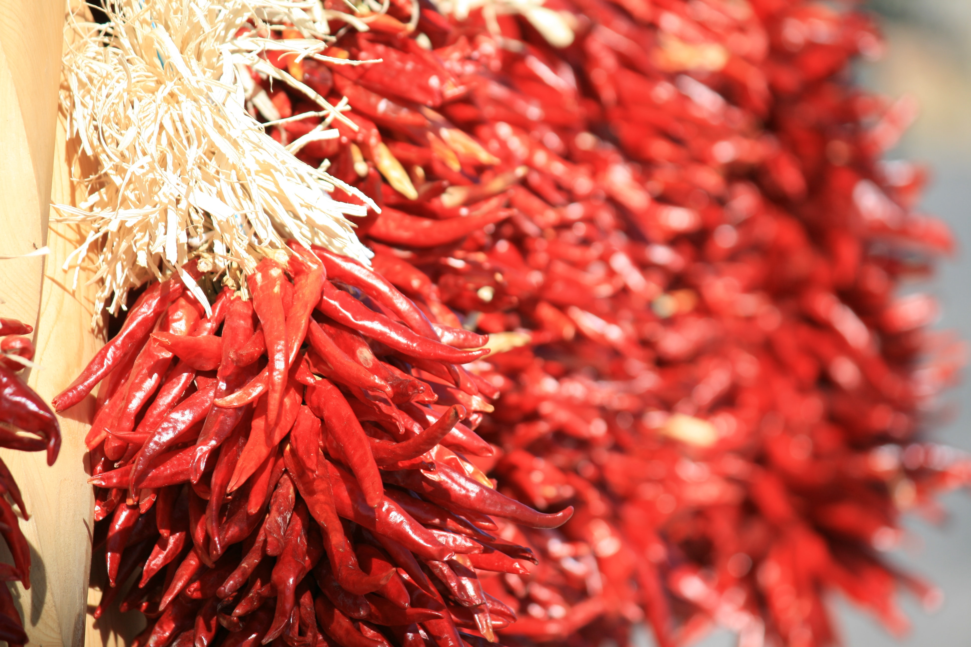 Bundles of dried red spicy chili peppers