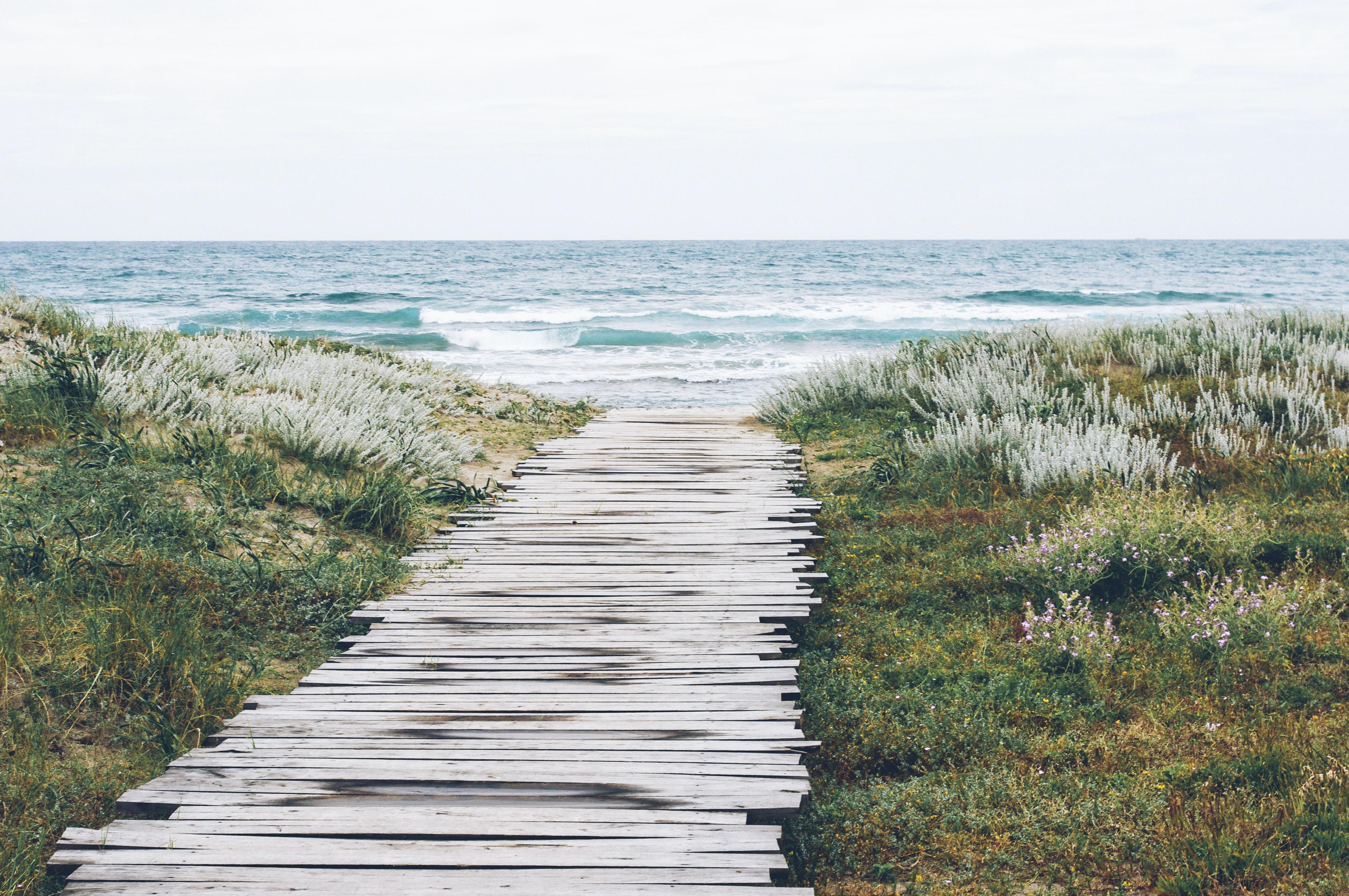 Wooden path through the grass toward the ocean beach