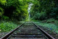 Train... train stories