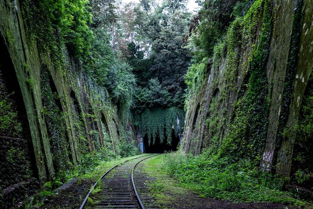 train rail between wall