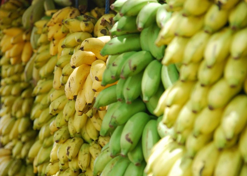 Stacks of yellow and green bananas and raw plantains
