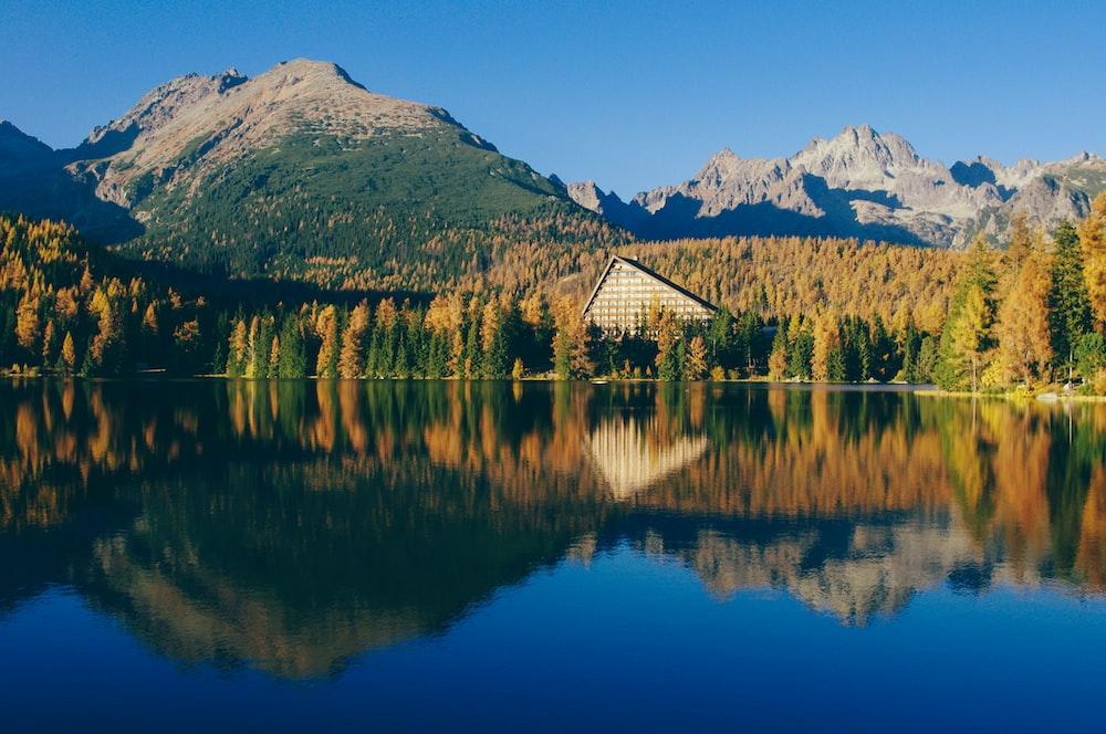 trees near mountain mirror reflection photography