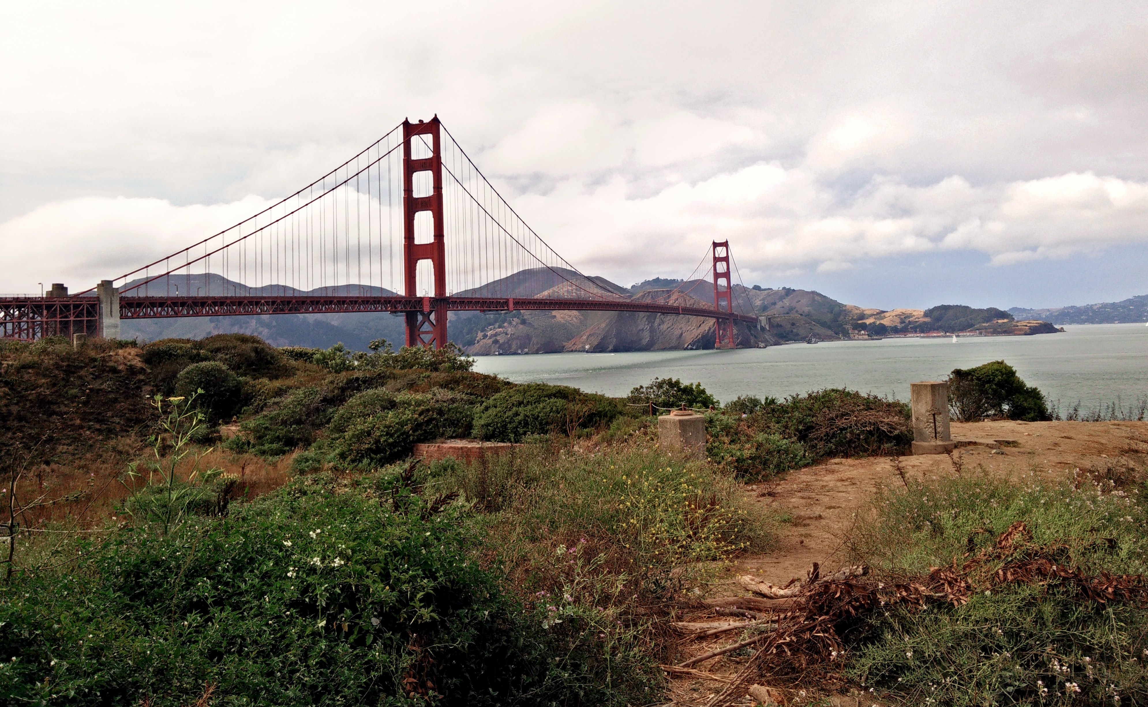 View of Golden Gate Bridge from the bushes