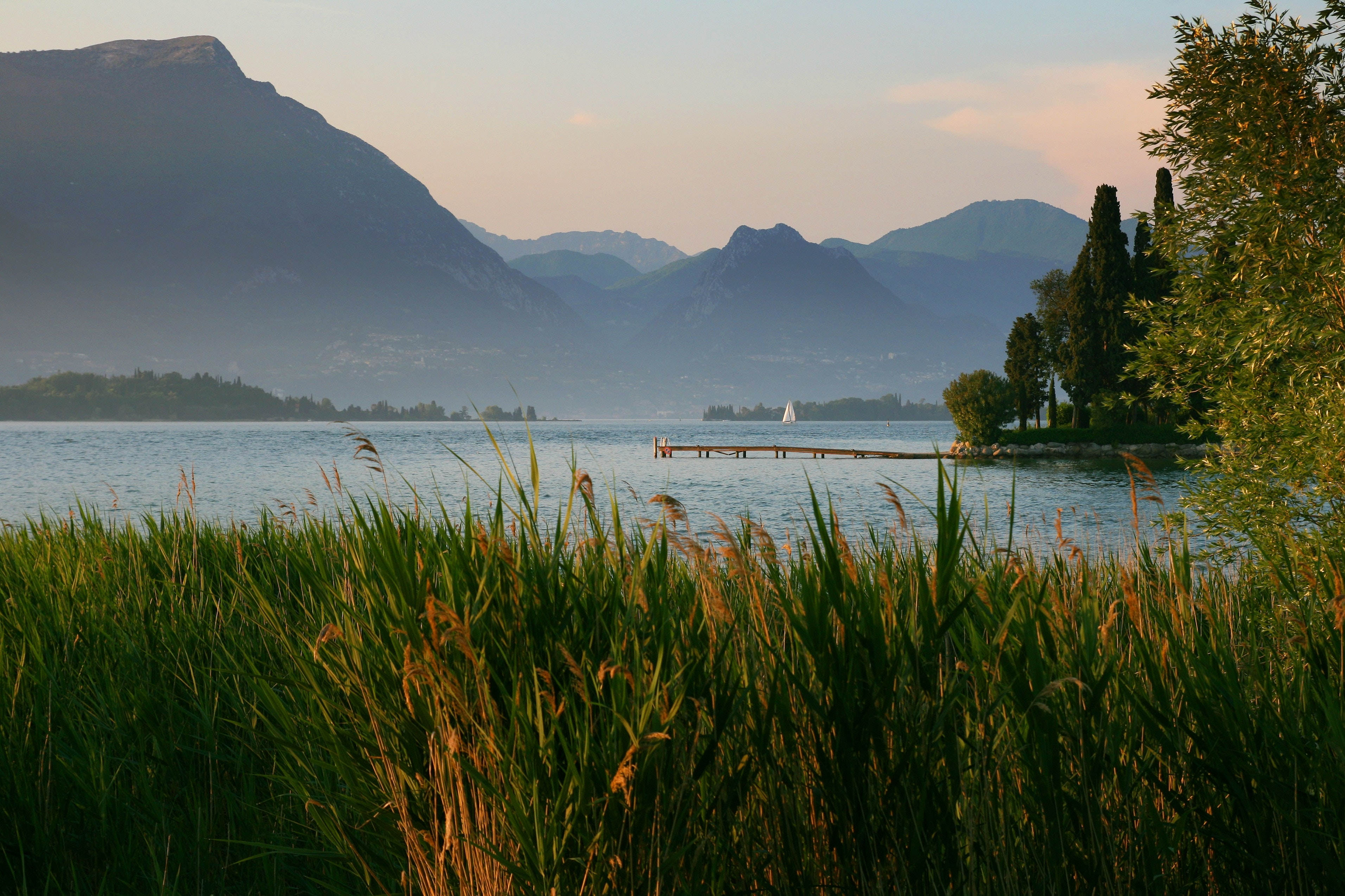 Tall grass near a mountain lake with a yacht and a pier in the distance