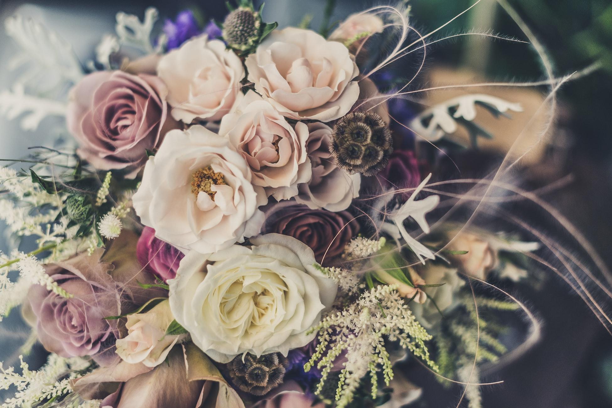 Earn money as Florist on Venopi