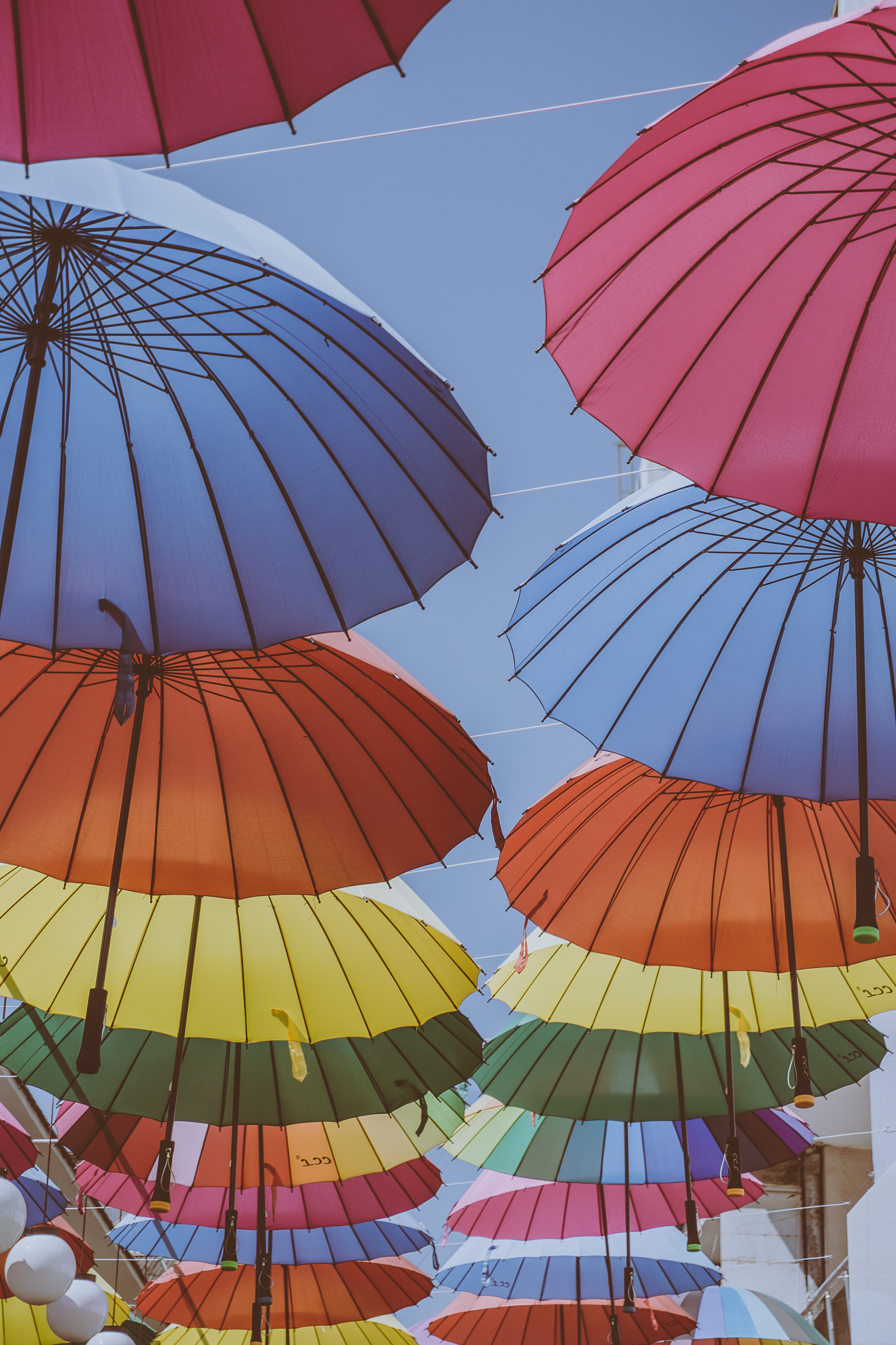 assorted-color umbrellas on street