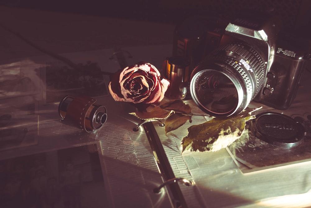 MILC camera beside red rose