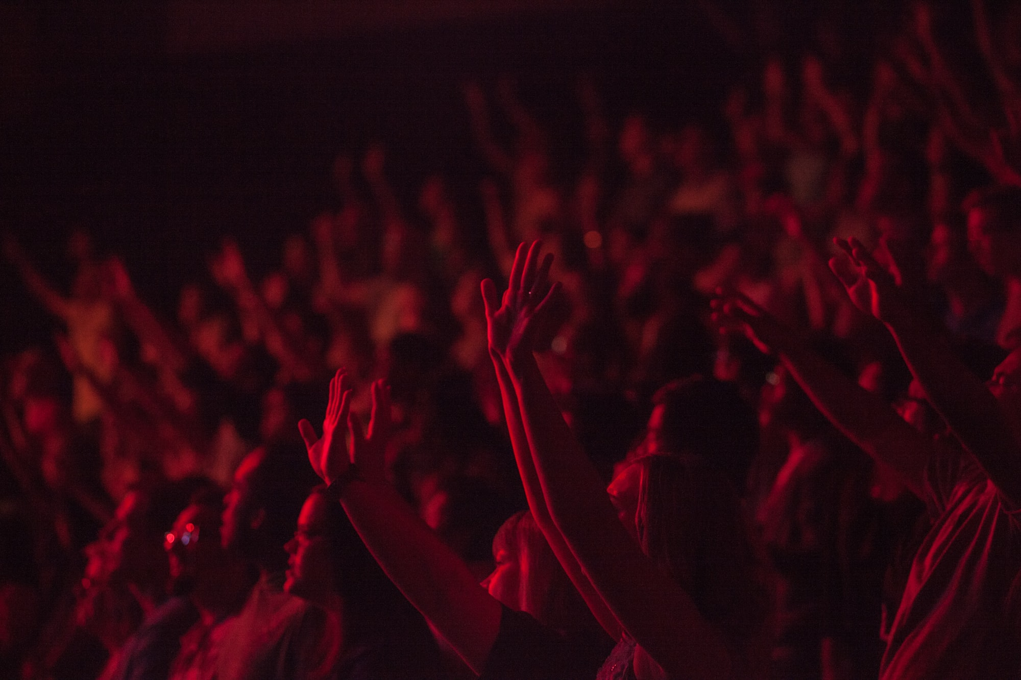A dim shot of a cheering crowd at a concert