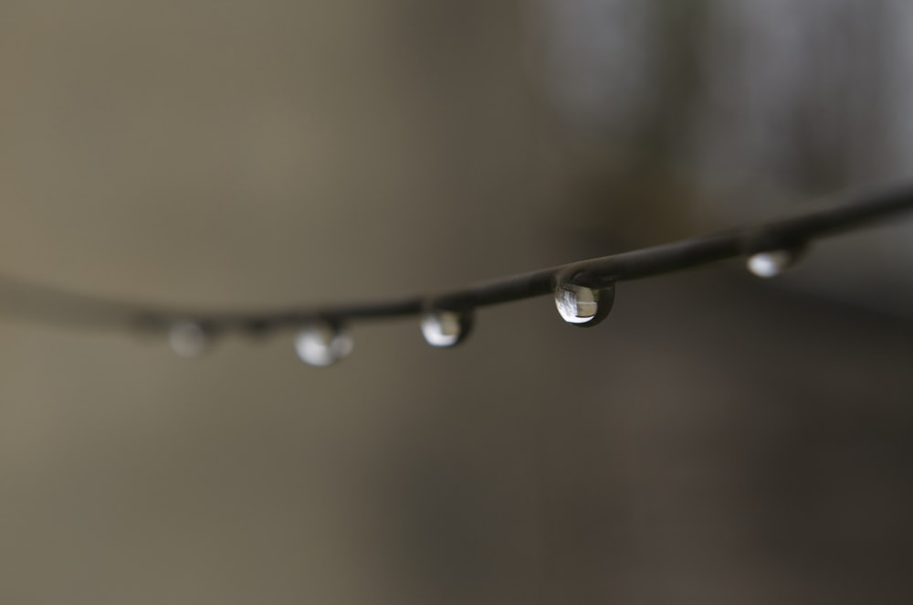 selective focus photo of water drew on wire