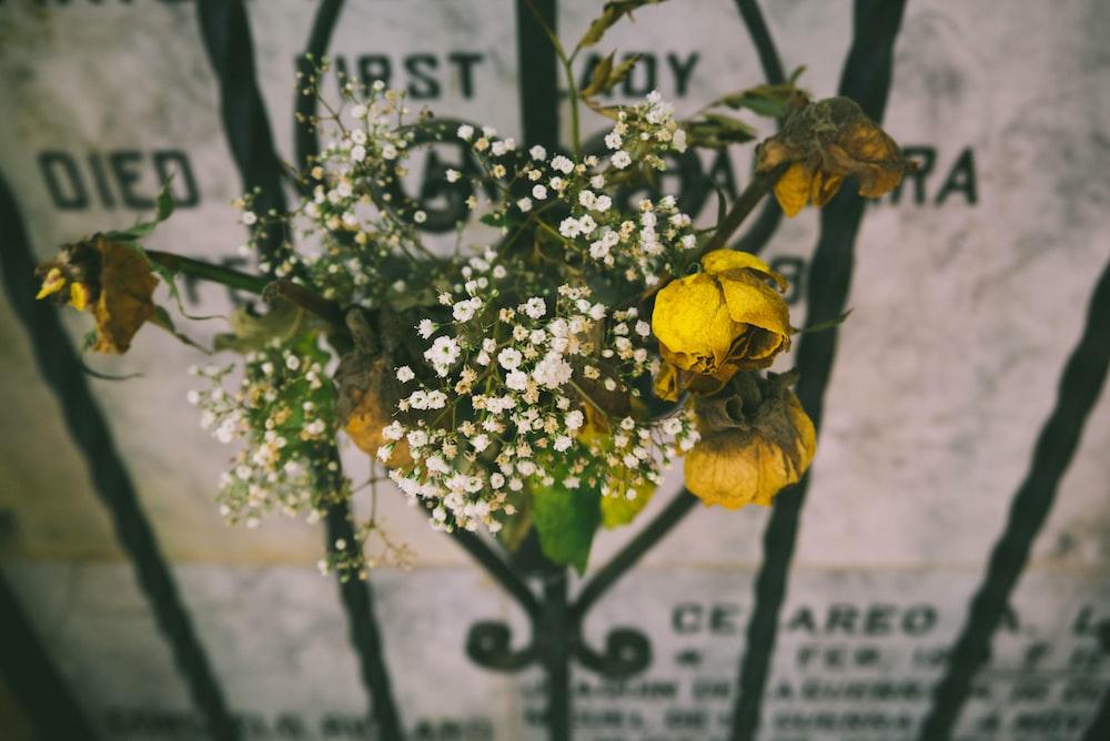 yellow rose on black metal frame