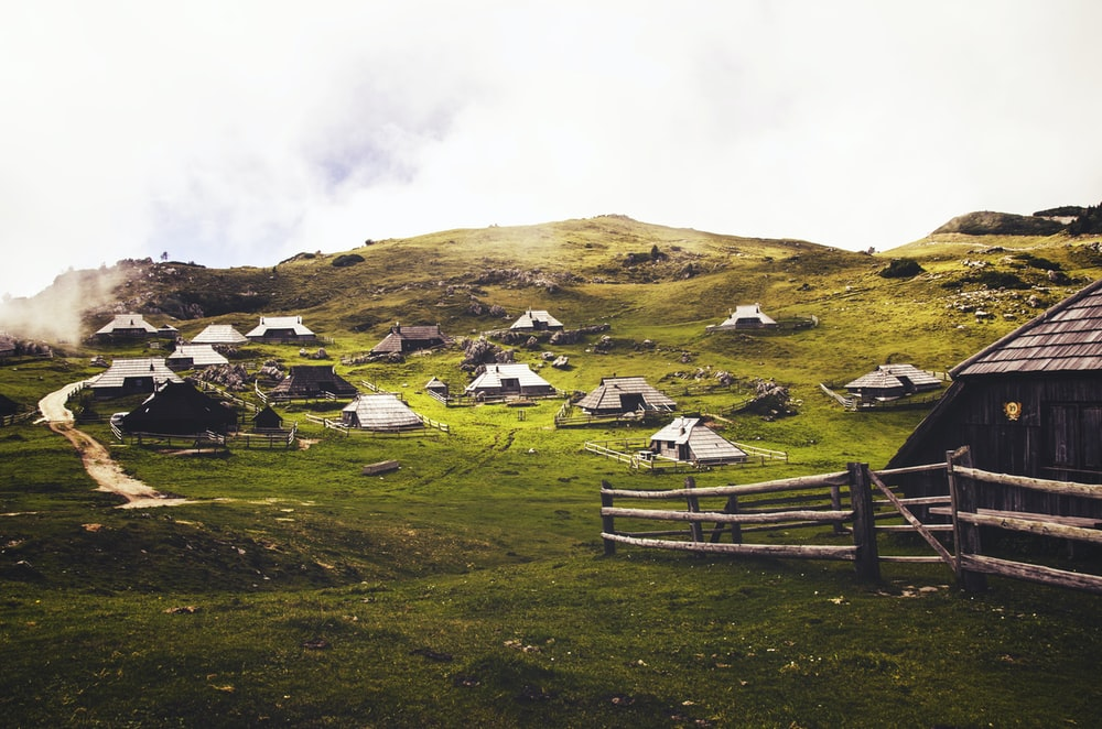 houses in green grass field