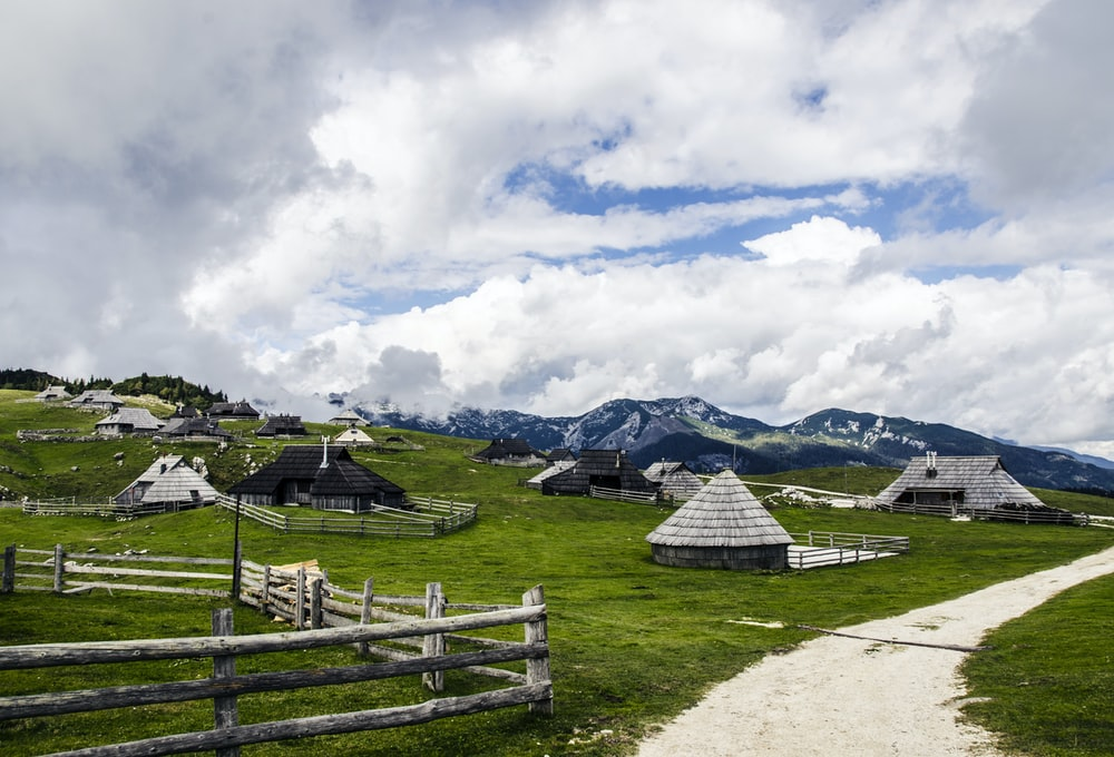 scenery of houses on a grass land
