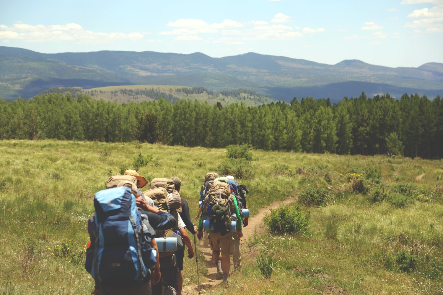 Group of hikers are walking the mountain trail while wearing their hiking gears
