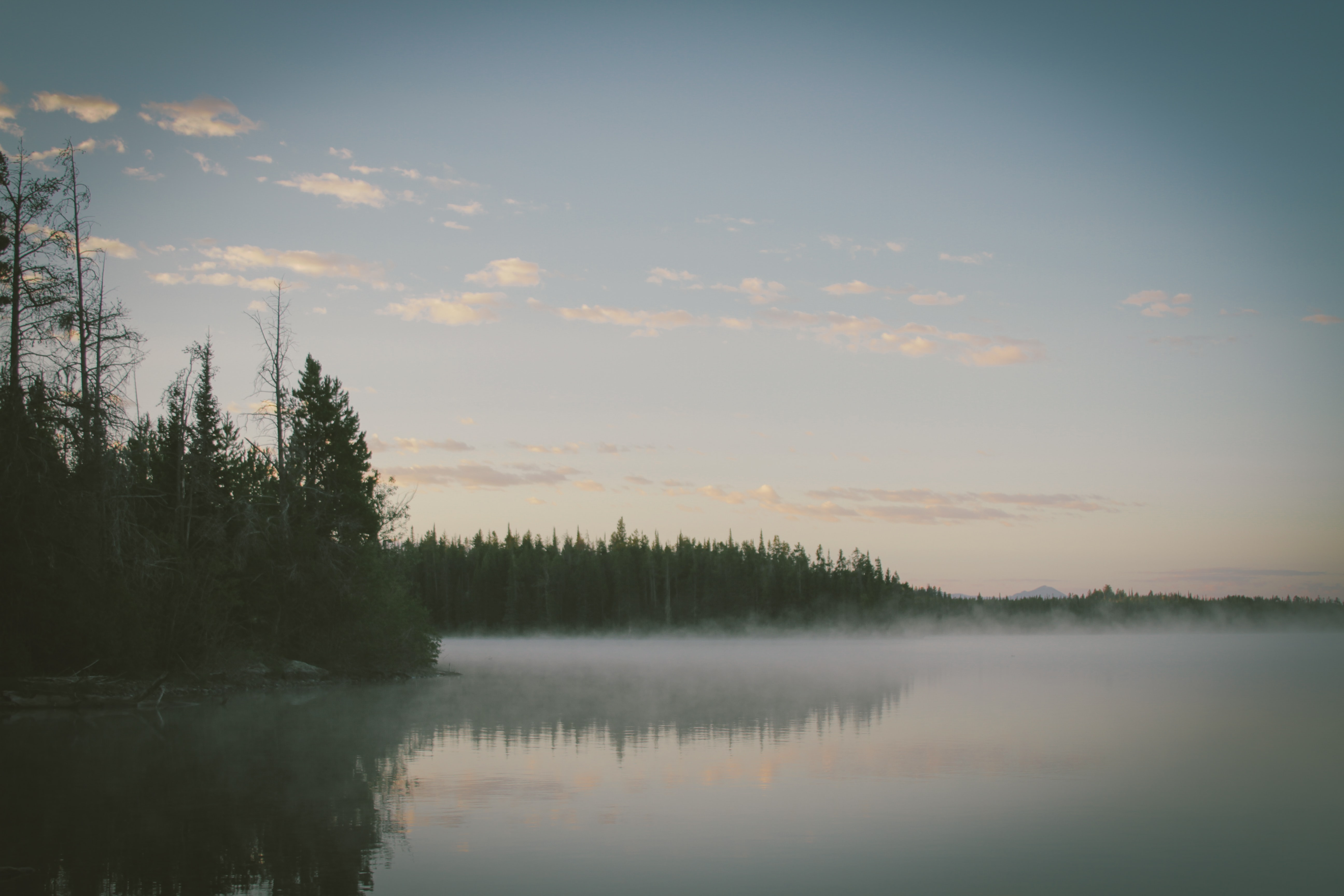 Fog hovering above the clear surface of a lake on a quiet evening