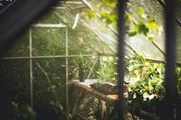 Cozy greenhouse