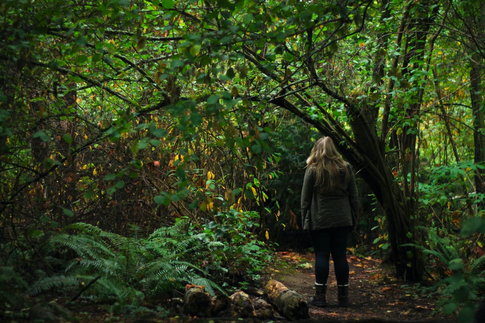 woman walking in the middle of forest