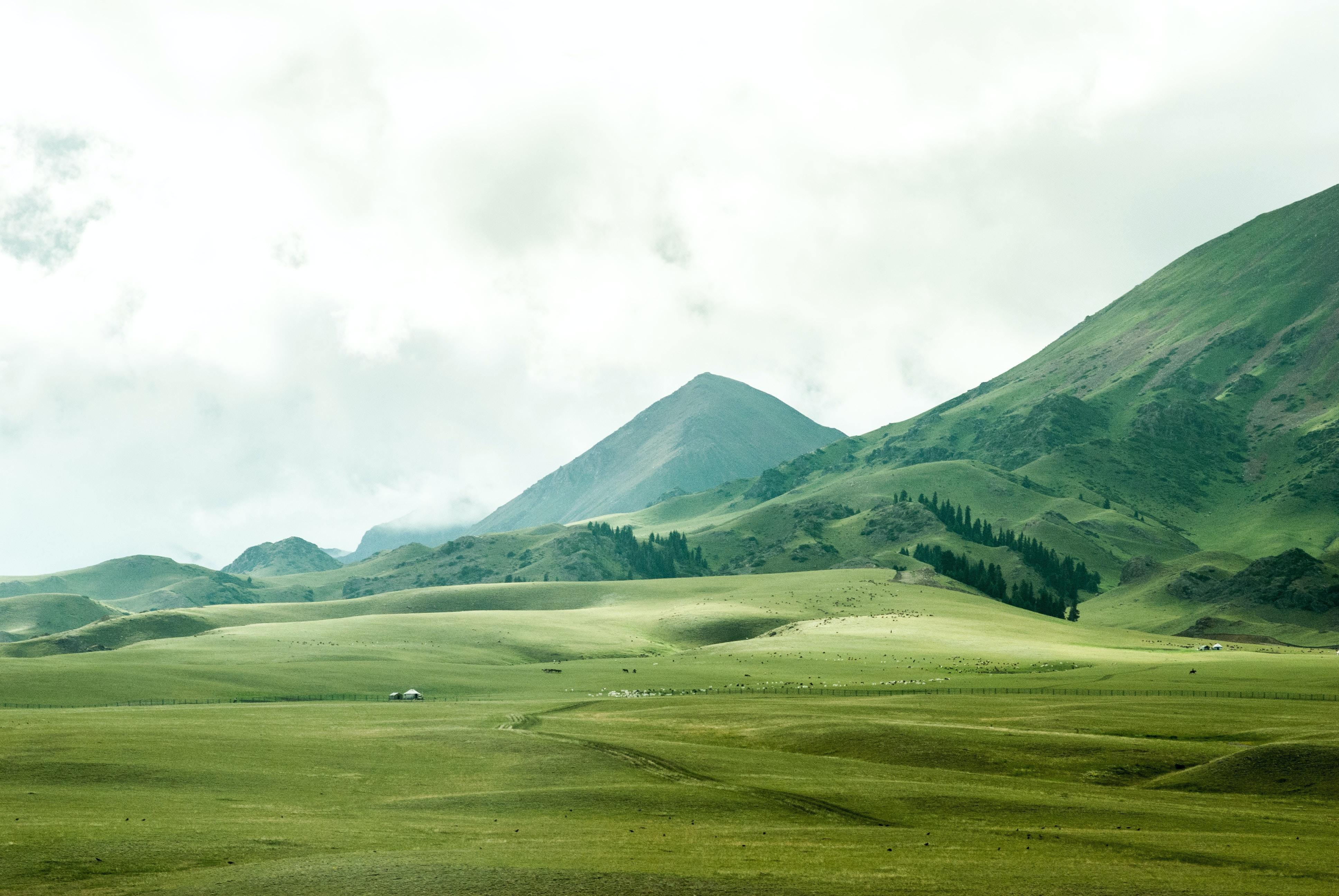 Green pastures stretching to the horizon near a mountain peak